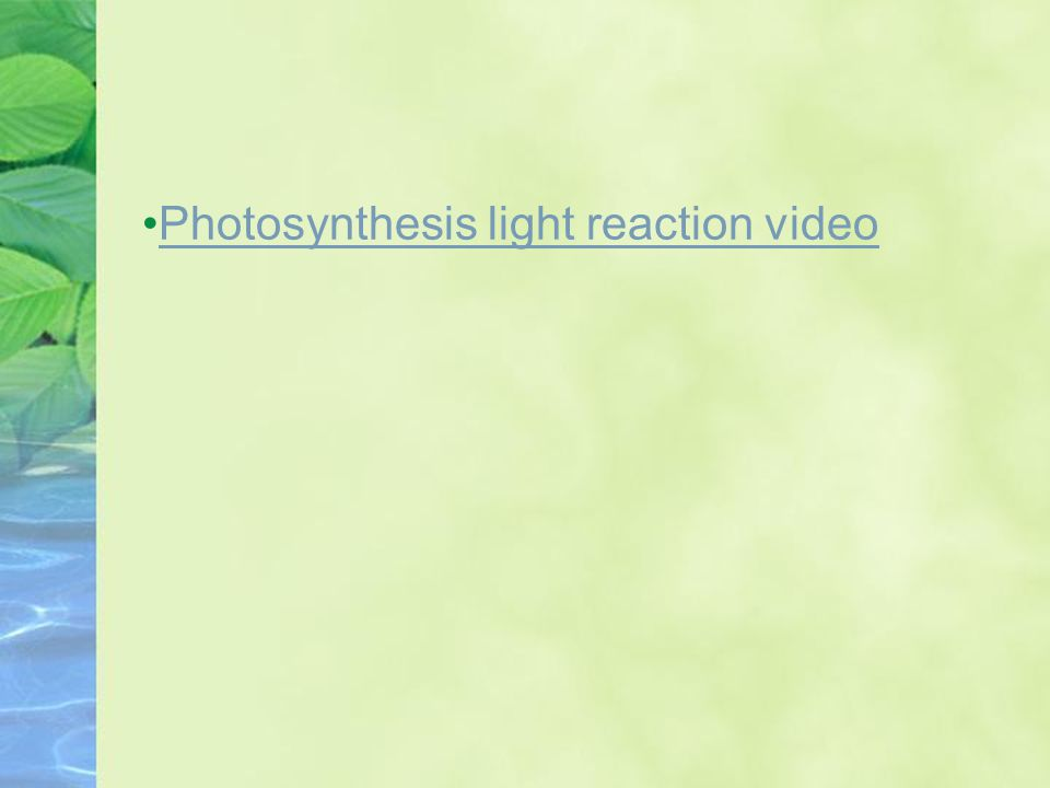 Photosynthesis light reaction video