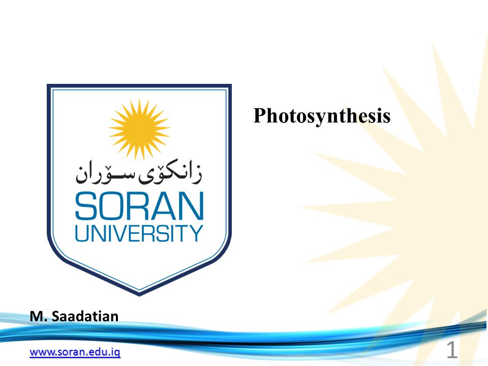 www.soran.edu.iq M. Saadatian Photosynthesis 1