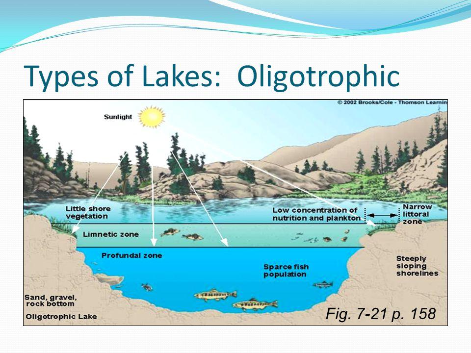 Types of Lakes: Oligotrophic Fig. 7-21 p. 158