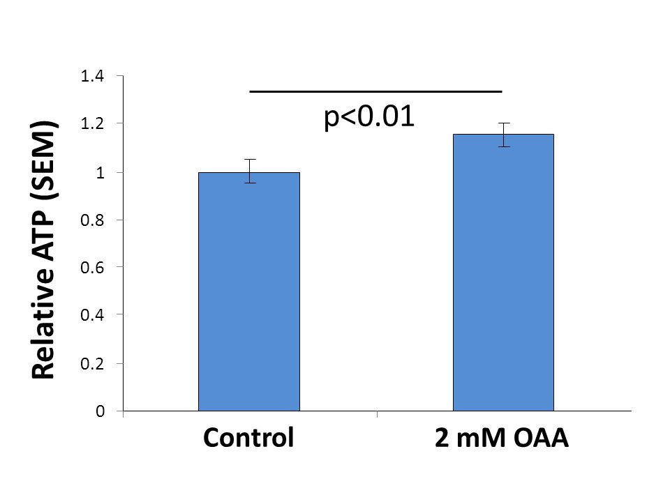 0 0.2 0.4 0.6 0.8 1 1.2 1.4 Relative ATP (SEM) Control 2 mM OAA p<0.01