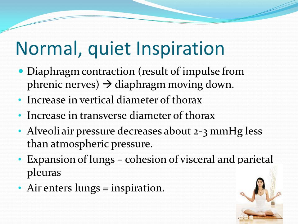 Breathing Mechanisms Inspiration – inhalation Atmospheric pressure, due to weight of air, is the force that moves air into lungs. At sea level, the at