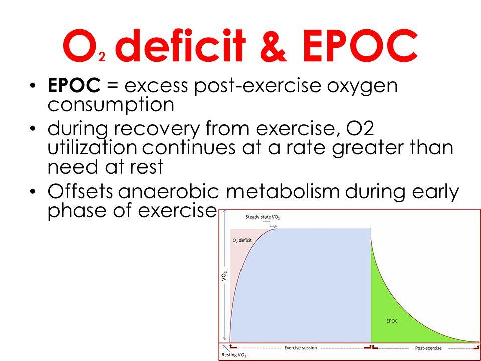 O 2 deficit & EPOC EPOC = excess post-exercise oxygen consumption during recovery from exercise, O2 utilization continues at a rate greater than need