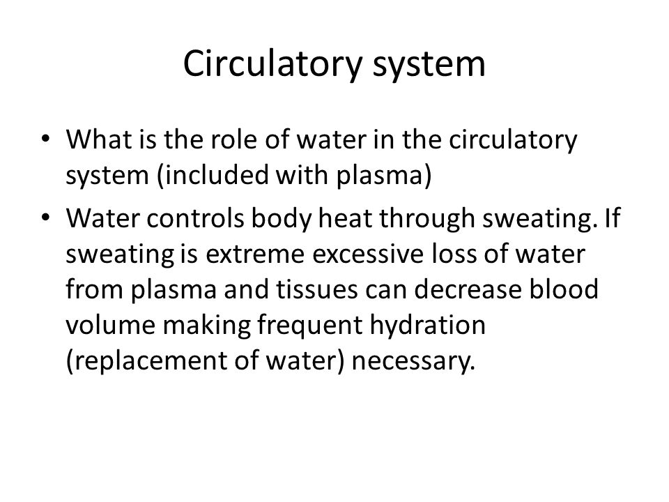 Circulatory system What is the role of water in the circulatory system (included with plasma) Water controls body heat through sweating.