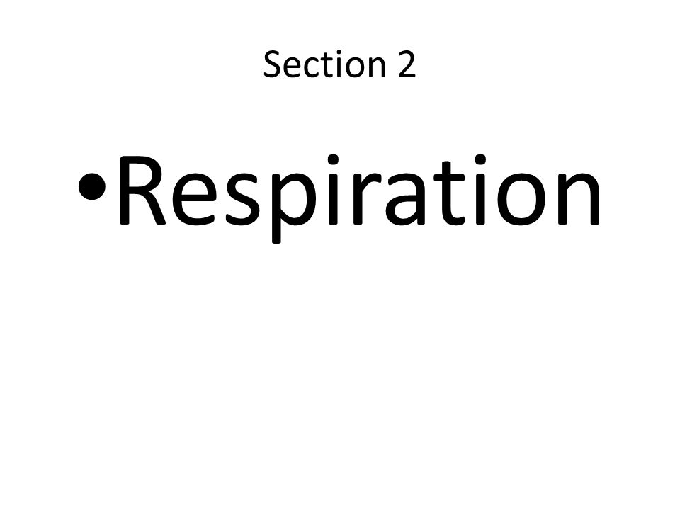Section 2 Respiration