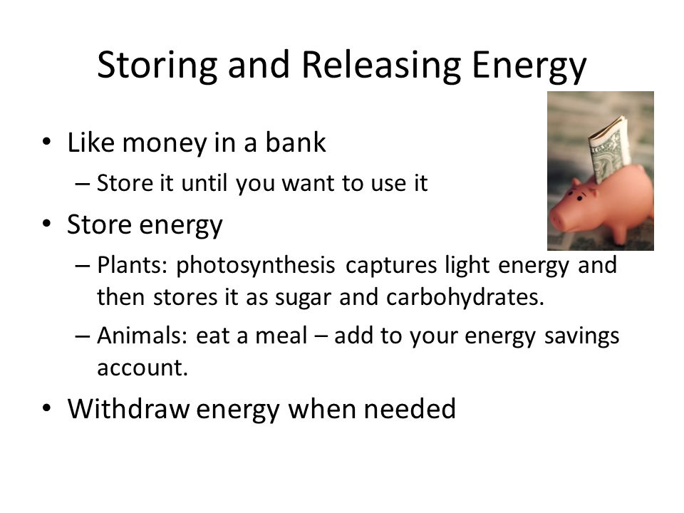 Storing and Releasing Energy Like money in a bank – Store it until you want to use it Store energy – Plants: photosynthesis captures light energy and