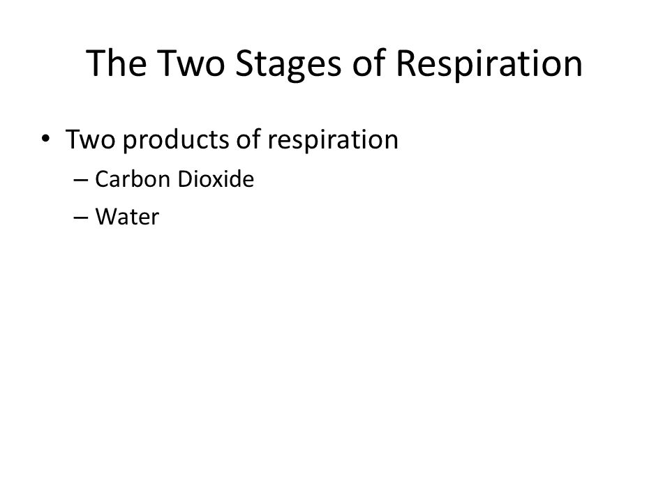 The Two Stages of Respiration Two products of respiration – Carbon Dioxide – Water