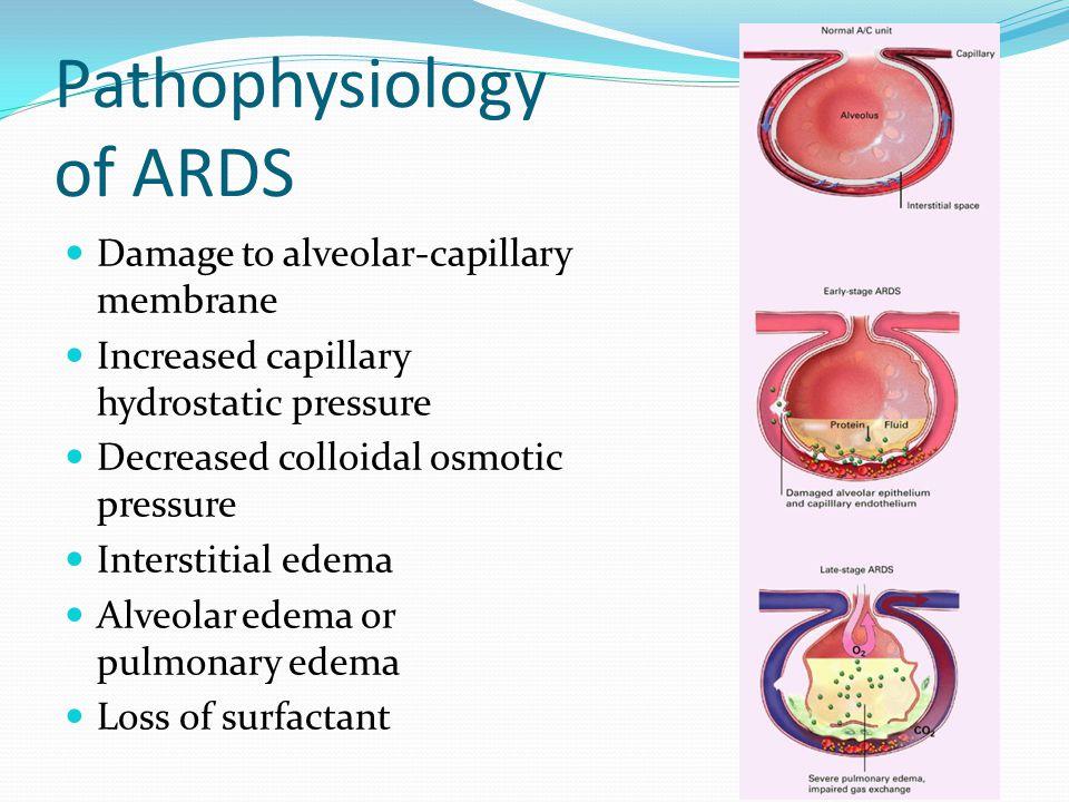 Pathophysiology of ARDS Damage to alveolar-capillary membrane Increased capillary hydrostatic pressure Decreased colloidal osmotic pressure Interstiti