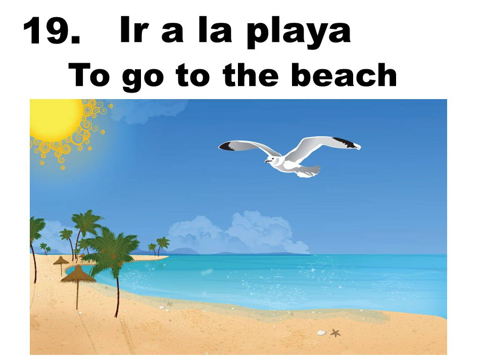19. Ir a la playa To go to the beach