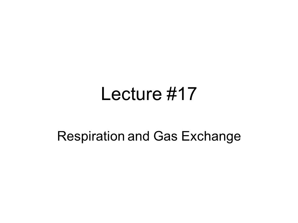 Lecture #17 Respiration and Gas Exchange