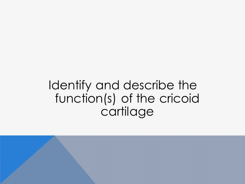 Identify and describe the function(s) of the cricoid cartilage