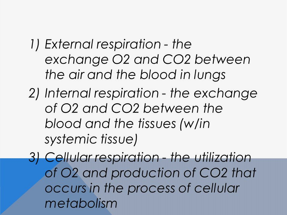 1)External respiration - the exchange O2 and CO2 between the air and the blood in lungs 2)Internal respiration - the exchange of O2 and CO2 between the blood and the tissues (w/in systemic tissue) 3)Cellular respiration - the utilization of O2 and production of CO2 that occurs in the process of cellular metabolism