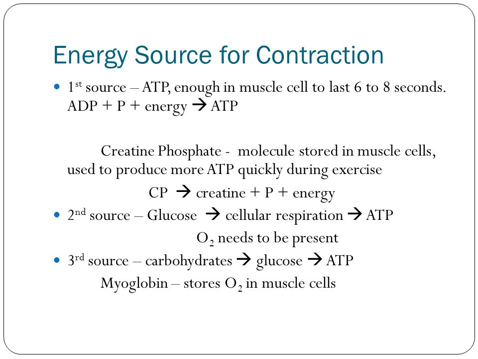 Energy Source for Contraction 1 st source – ATP, enough in muscle cell to last 6 to 8 seconds. ADP + P + energy  ATP Creatine Phosphate - molecule st