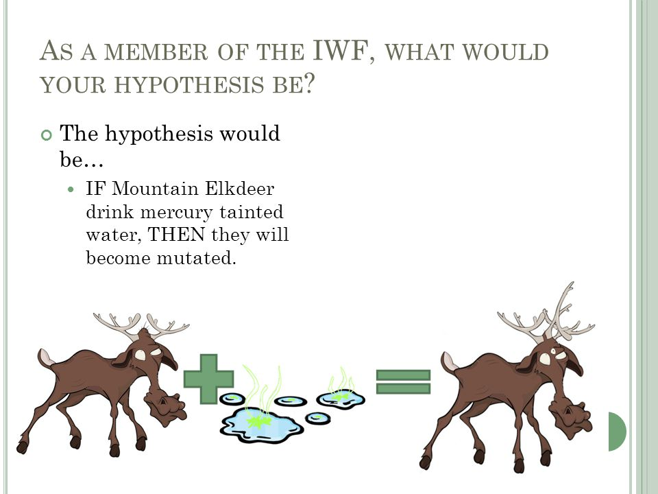 A S A MEMBER OF THE IWF, WHAT WOULD YOUR HYPOTHESIS BE .