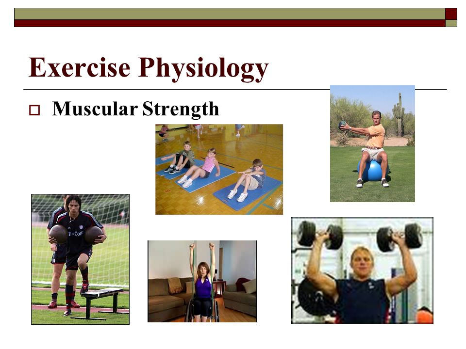 Exercise Physiology  Muscular Endurance (conditioning)