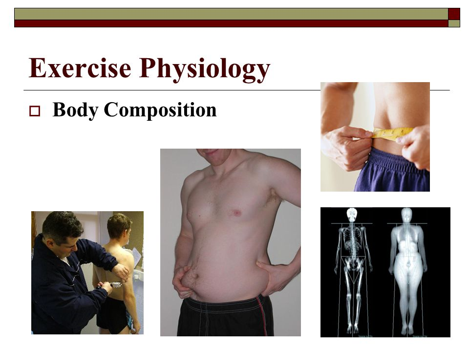Exercise Physiology  Balance