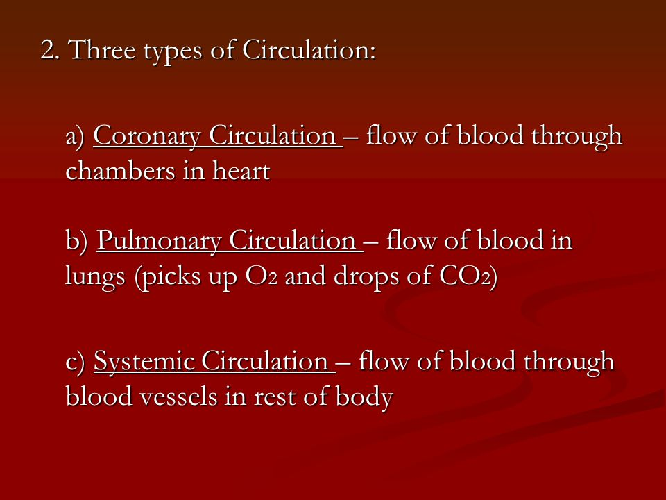 C.Blood Vessels – carry blood to every part of your body 1.