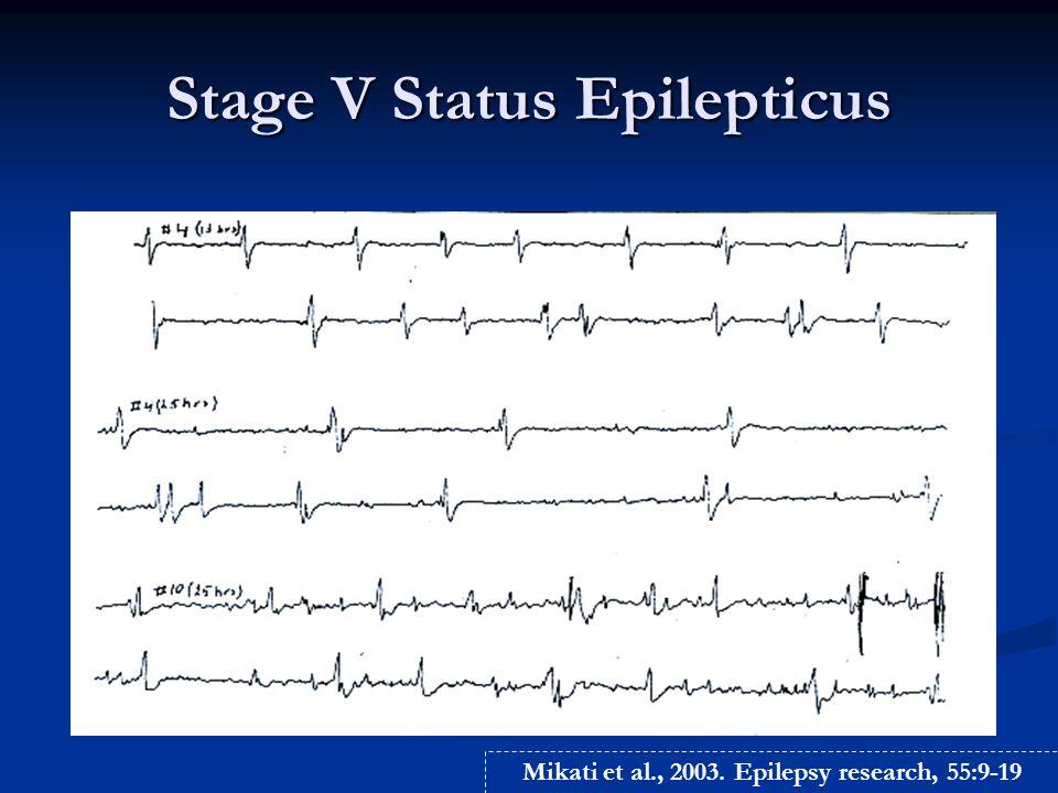 Apoptosis after Status Epilepticus (Kainic Acid Model)