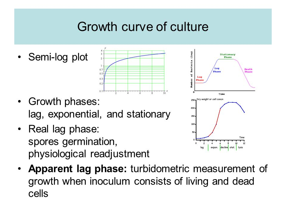 Specific oxygen consumption (2) If ATP generated per mole of oxygen consumed does not vary with the growth rate, then the total energy available for doubling the cell mass decreases in proportion to the growth rate.