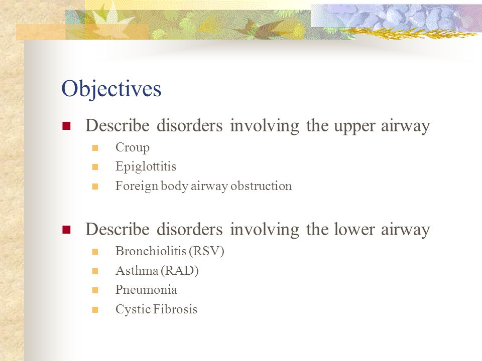 Objectives The learner will be able to: State the functions and components of the respiratory tract. Understand the effect of respiratory disorders on