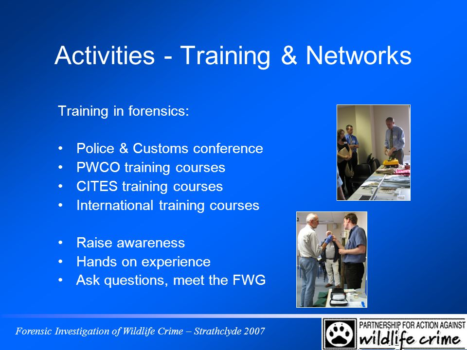 Forensic Investigation of Wildlife Crime – Strathclyde 2007 Activities - Training & Networks Training in forensics: Police & Customs conference PWCO training courses CITES training courses International training courses Raise awareness Hands on experience Ask questions, meet the FWG