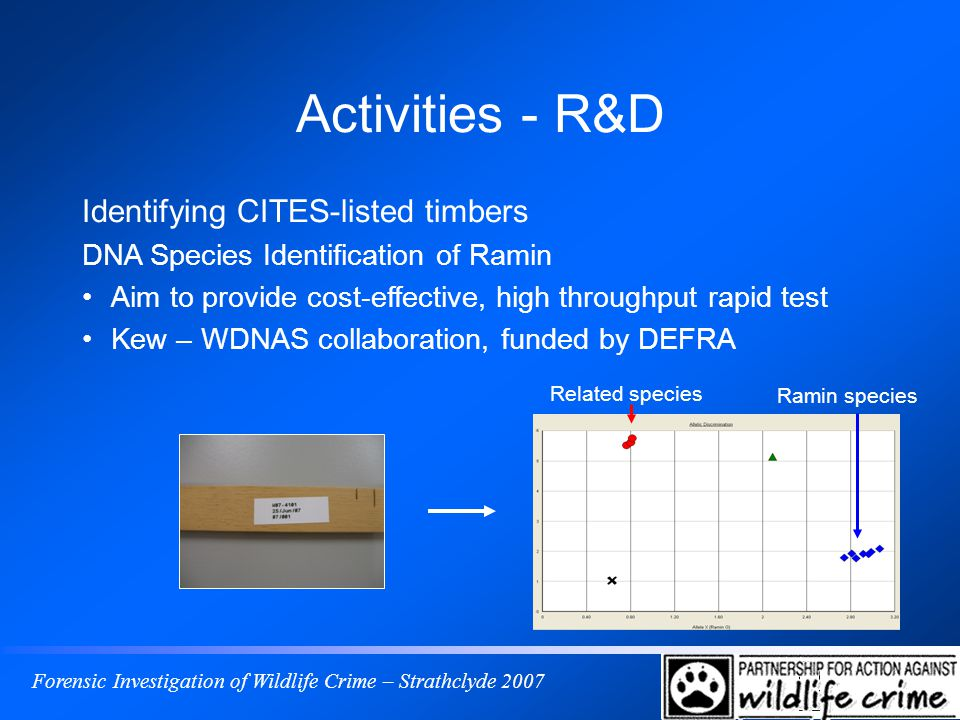 Forensic Investigation of Wildlife Crime – Strathclyde 2007 Activities - R&D Identifying CITES-listed timbers DNA Species Identification of Ramin Aim