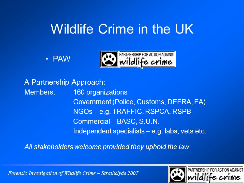 Forensic Investigation of Wildlife Crime – Strathclyde 2007 Wildlife Crime in the UK A Partnership Approach: Members:160 organizations Government (Police, Customs, DEFRA, EA) NGOs – e.g.