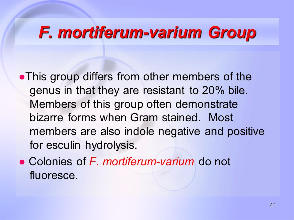 41 F. mortiferum-varium Group ●This group differs from other members of the genus in that they are resistant to 20% bile. Members of this group often