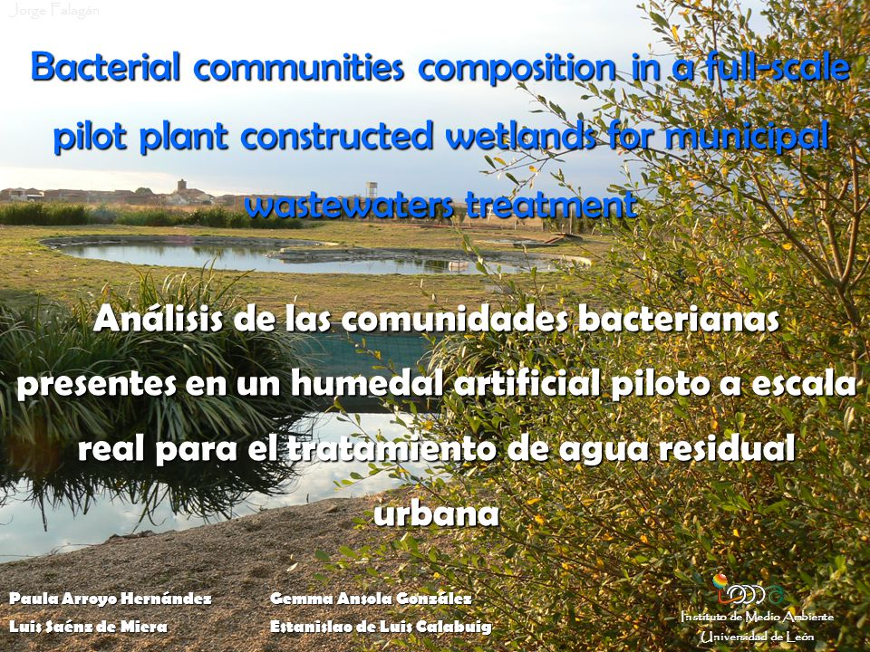 CONSTRUCTED WETLANDS Natural wetlands are a complex ecosystem of plants, microorganisms and substrata that together act as a biogeochemical filter.