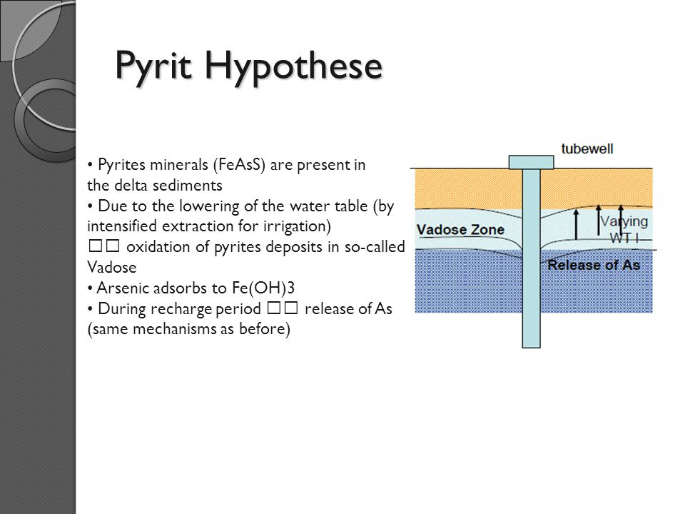 Pyrit Hypothese Pyrites minerals (FeAsS) are present in the delta sediments Due to the lowering of the water table (by intensified extraction for irrigation)  oxidation of pyrites deposits in so-called Vadose Arsenic adsorbs to Fe(OH)3 During recharge period  release of As (same mechanisms as before)