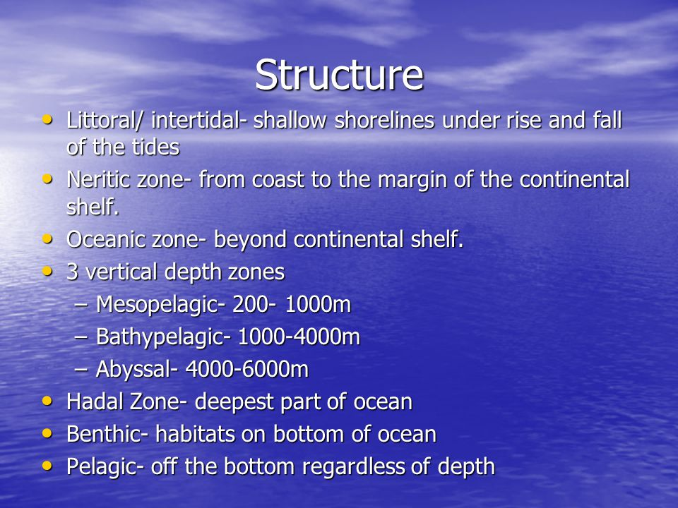 Structure Littoral/ intertidal- shallow shorelines under rise and fall of the tides Littoral/ intertidal- shallow shorelines under rise and fall of the tides Neritic zone- from coast to the margin of the continental shelf.