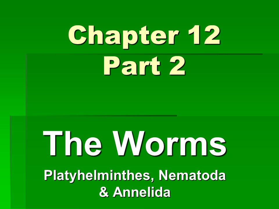 Chapter 12 Part 2 The Worms Platyhelminthes, Nematoda & Annelida