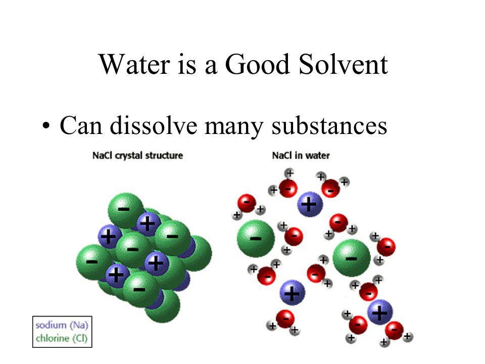 Water is a Good Solvent Can dissolve many substances