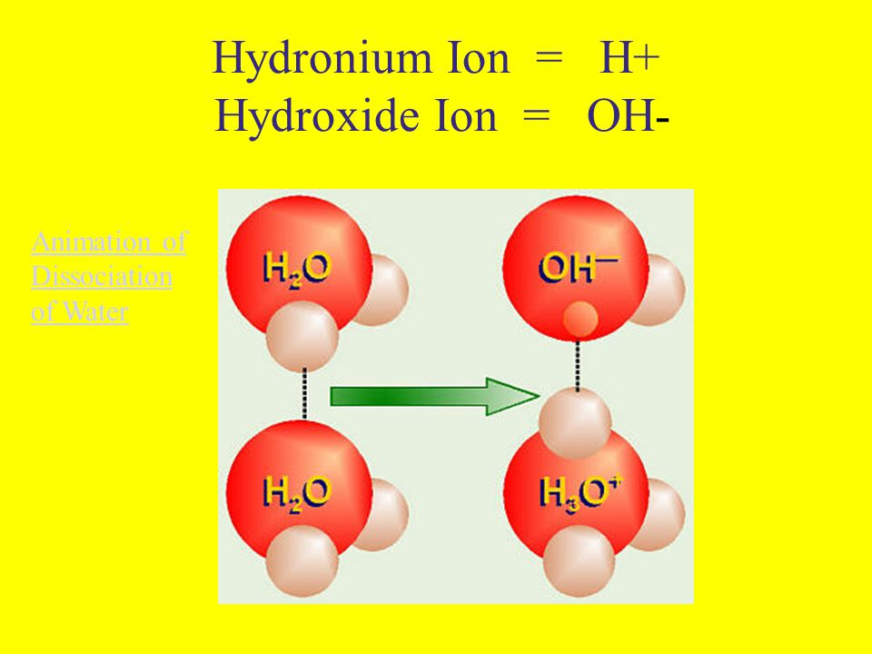 Hydronium Ion = H+ Hydroxide Ion = OH- Animation of Dissociation of Water