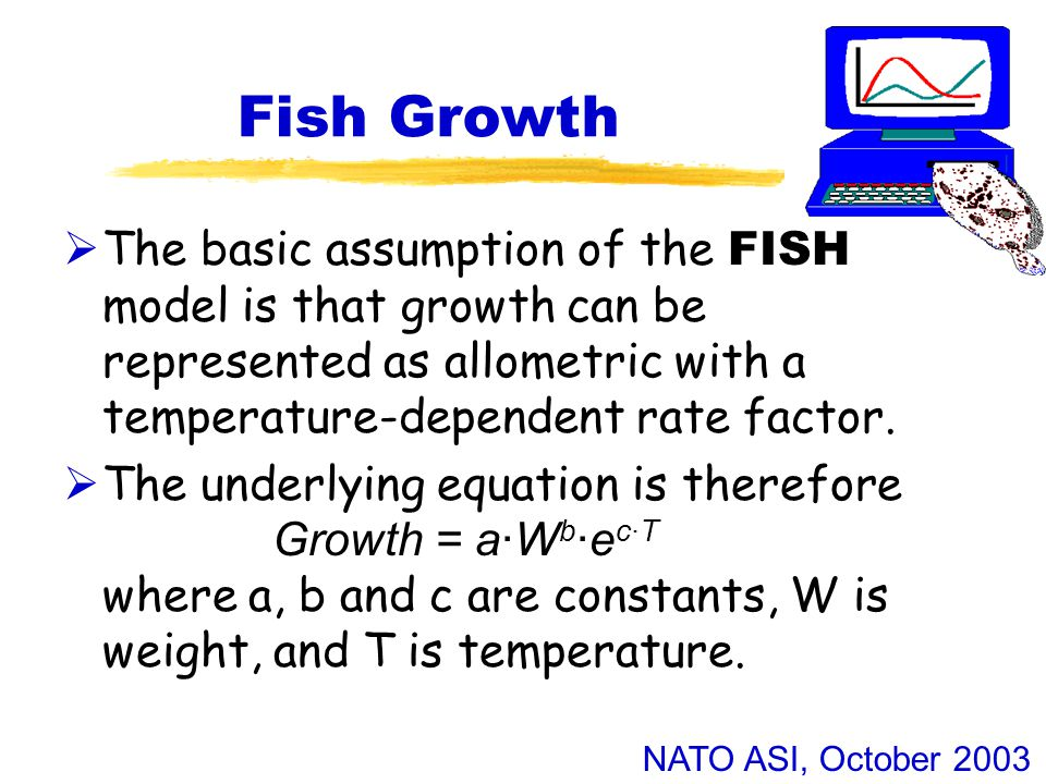 NATO ASI, October 2003 Fish Growth  The basic assumption of the FISH model is that growth can be represented as allometric with a temperature-dependent rate factor.