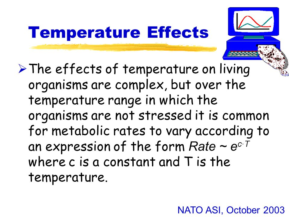 NATO ASI, October 2003 Temperature Effects  The effects of temperature on living organisms are complex, but over the temperature range in which the organisms are not stressed it is common for metabolic rates to vary according to an expression of the form Rate ~ e c·T where c is a constant and T is the temperature.
