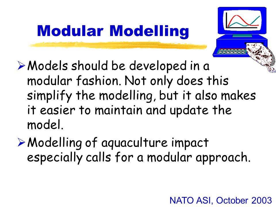 NATO ASI, October 2003 Modular Modelling  Models should be developed in a modular fashion.