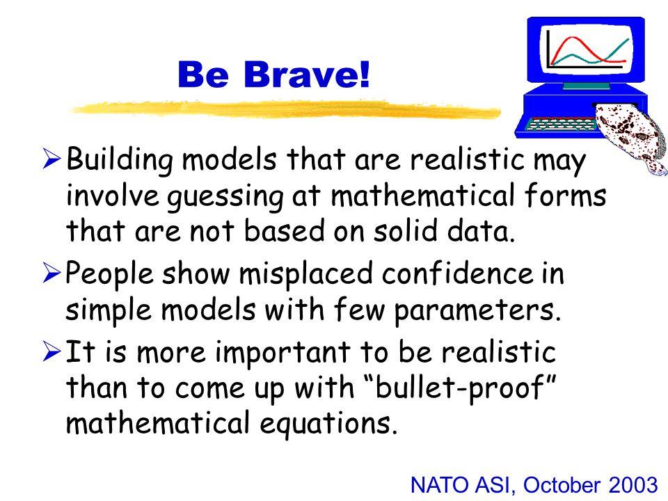 NATO ASI, October 2003 Be Brave.