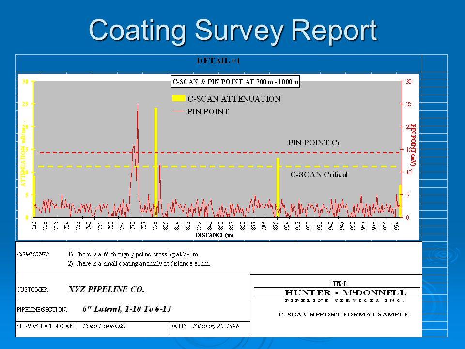 Coating Survey Report