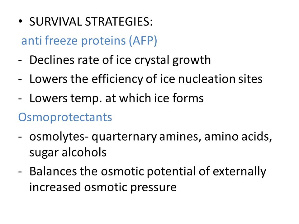 SURVIVAL STRATEGIES: anti freeze proteins (AFP) -Declines rate of ice crystal growth -Lowers the efficiency of ice nucleation sites -Lowers temp.