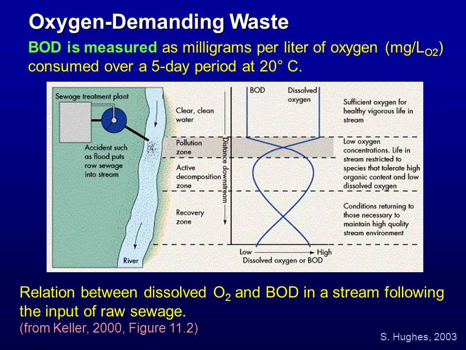 BOD is measured as milligrams per liter of oxygen (mg/L O2 ) consumed over a 5-day period at 20° C. Oxygen-Demanding Waste Relation between dissolved