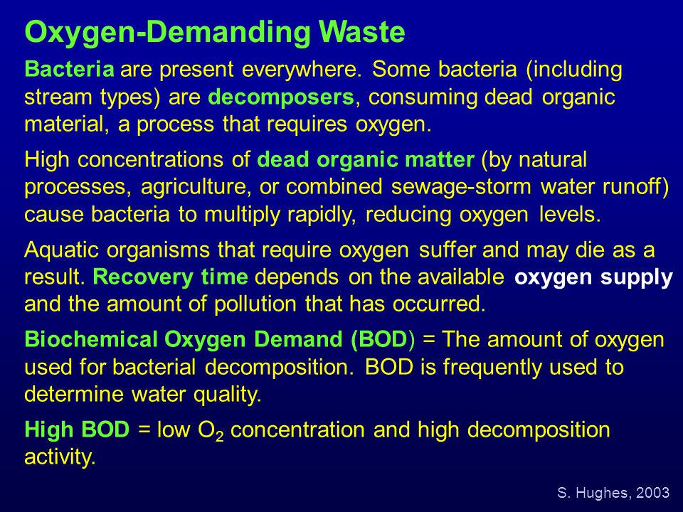 Bacteria are present everywhere. Some bacteria (including stream types) are decomposers, consuming dead organic material, a process that requires oxyg