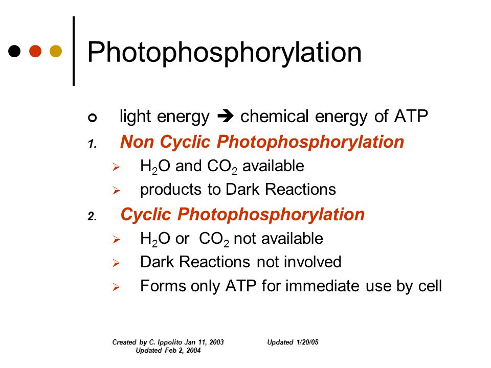 Updated 1/20/05Created by C. Ippolito Jan 11, 2003 Updated Feb 2, 2004 Photophosphorylation light energy  chemical energy of ATP 1. Non Cyclic Photop