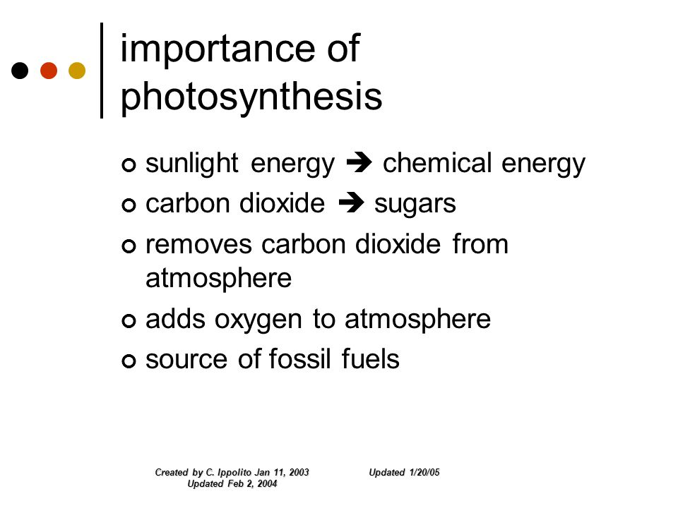 Updated 1/20/05Created by C. Ippolito Jan 11, 2003 Updated Feb 2, 2004 importance of photosynthesis sunlight energy  chemical energy carbon dioxide 