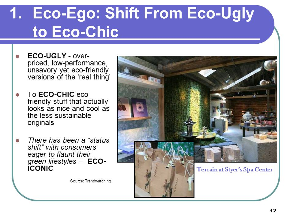 12 1.Eco-Ego: Shift From Eco-Ugly to Eco-Chic ECO-UGLY - over- priced, low-performance, unsavory yet eco-friendly versions of the 'real thing' To ECO-CHIC eco- friendly stuff that actually looks as nice and cool as the less sustainable originals There has been a status shift with consumers eager to flaunt their green lifestyles -- ECO- ICONIC Source: Trendwatching Terrain at Styer's Spa Center