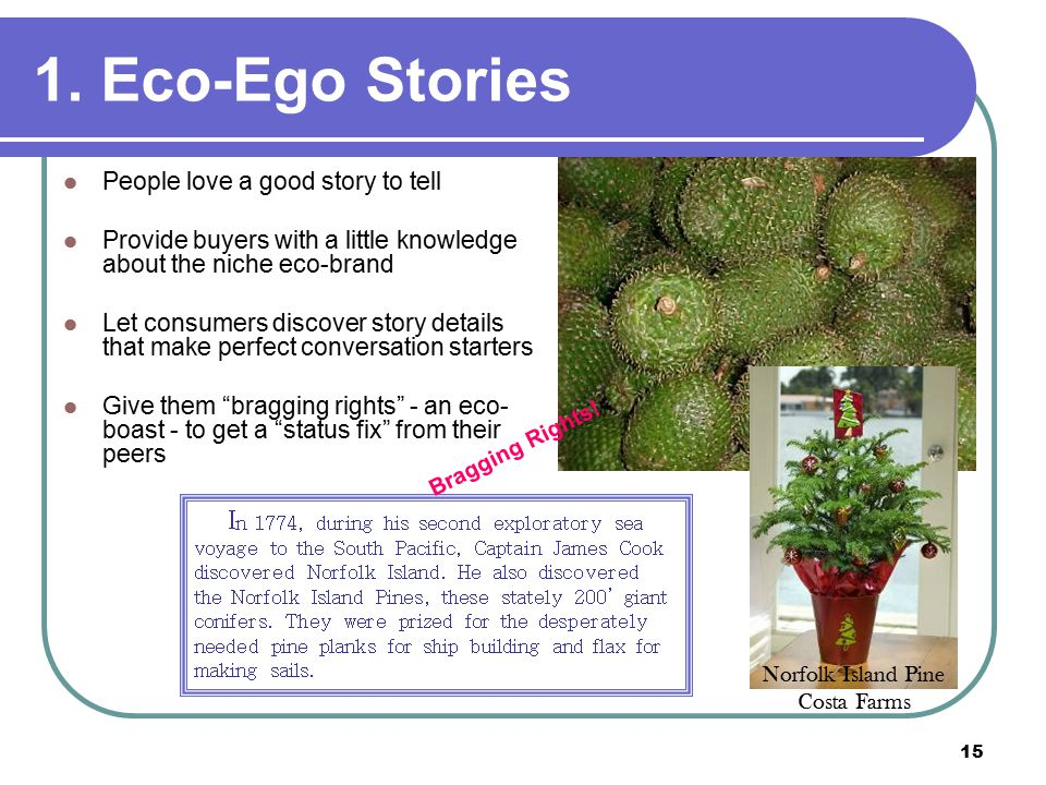 15 1. Eco-Ego Stories People love a good story to tell Provide buyers with a little knowledge about the niche eco-brand Let consumers discover story d