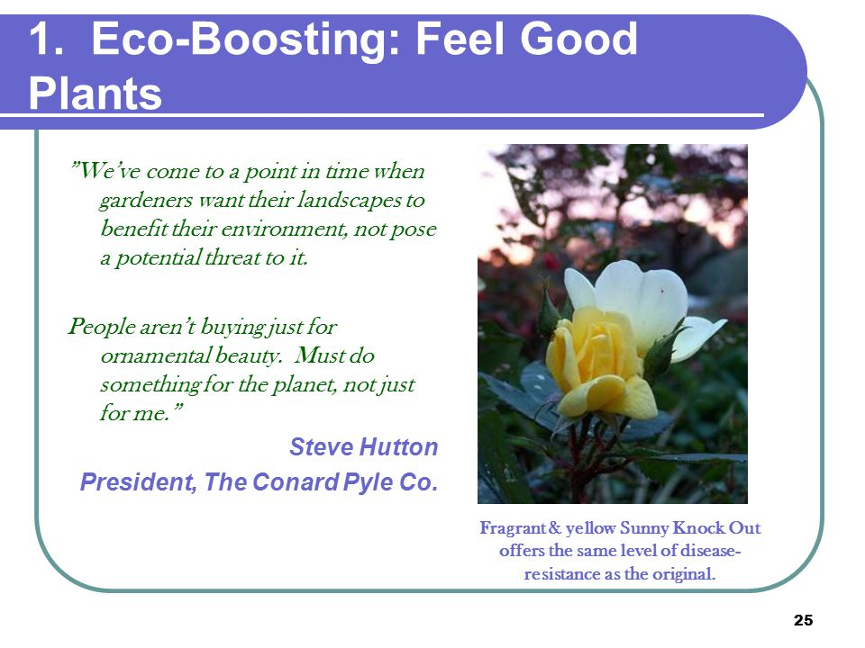 """25 1. Eco-Boosting: Feel Good Plants """"We've come to a point in time when gardeners want their landscapes to benefit their environment, not pose a pote"""