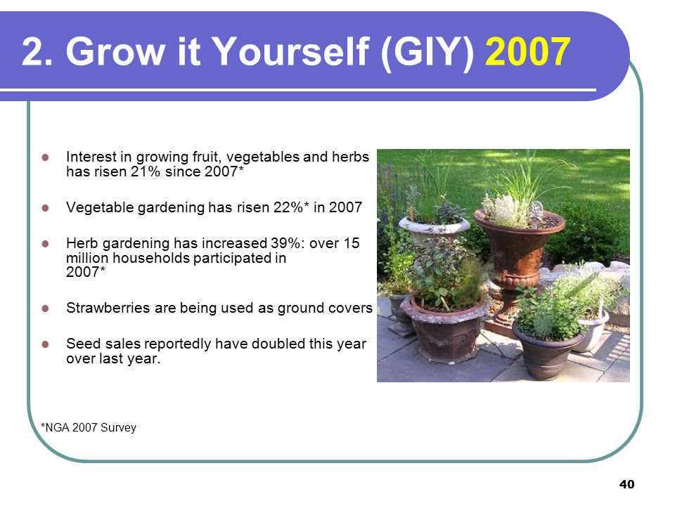 40 2. Grow it Yourself (GIY) 2007 Interest in growing fruit, vegetables and herbs has risen 21% since 2007* Vegetable gardening has risen 22%* in 2007