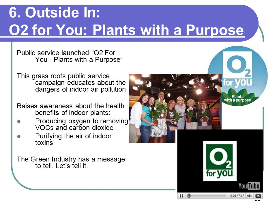 """68 6. Outside In: O2 for You: Plants with a Purpose Public service launched """"O2 For You - Plants with a Purpose"""" This grass roots public service campa"""