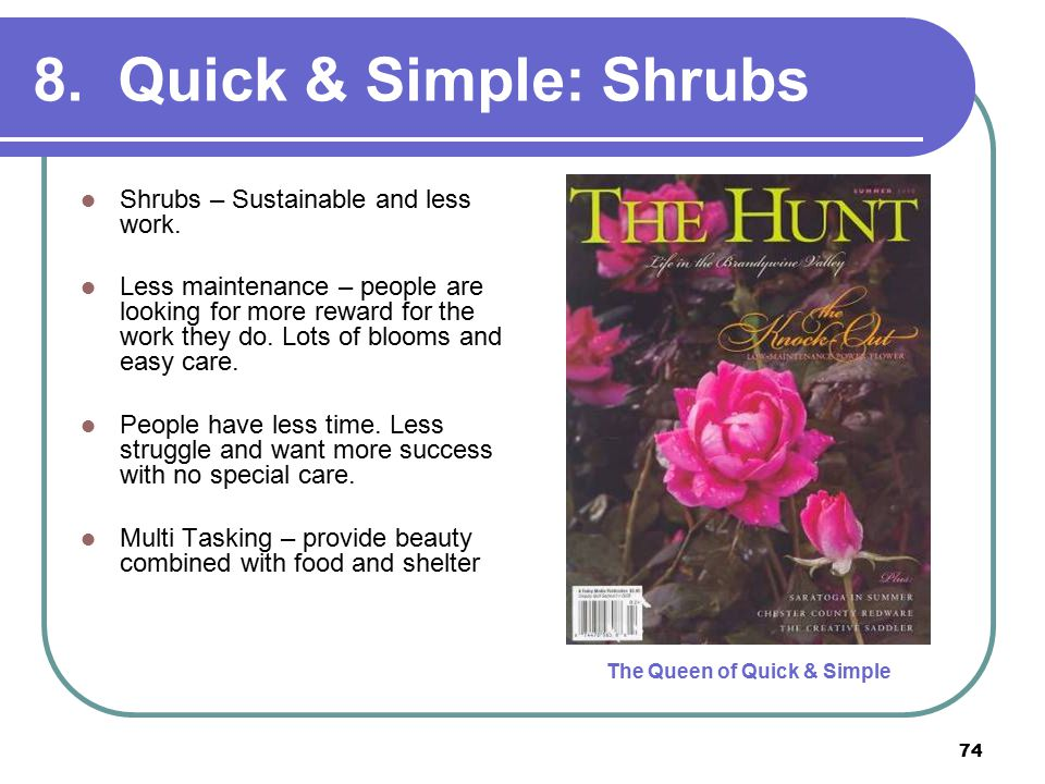 74 8. Quick & Simple: Shrubs Shrubs – Sustainable and less work.