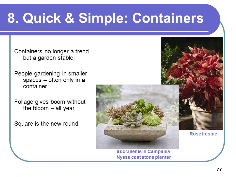 77 8. Quick & Simple: Containers Containers no longer a trend but a garden stable.